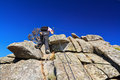 Hiker on via ferrata woman fearrata in capanne mount elba island italy Royalty Free Stock Photos