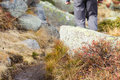 Hiker walking along a mountain footpath Royalty Free Stock Photo