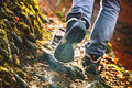 Hikers boots on forest trail. Autumn hiking. Royalty Free Stock Photo