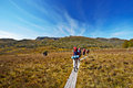 Hikers on overland trail in tasmania australia boardwalk Royalty Free Stock Image