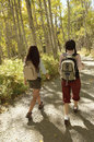 Hikers walking on path through forest full length rear view of two female Royalty Free Stock Photo