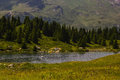 Hiking on the alp flix is moor to about m altitude and a beautiful nature reserve Stock Photography