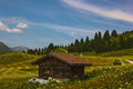 Hiking on the alp flix is moor to about m altitude and a beautiful nature reserve Royalty Free Stock Photography