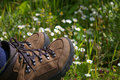 Hiking boots in field of daisys Royalty Free Stock Photo