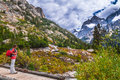 Hiking cascade canyon grant tetons female hiker on a foot bridge in Stock Photography