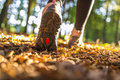 Hiking concept closeup of female legs on a beautiful summer day Stock Image