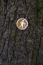 Hiking directional sign on tree a trail a for hikers Royalty Free Stock Photo