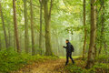 Hiking in forest man the morning mist travel concept Royalty Free Stock Photo