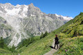 Hiking girl on mountain trail with flowers looks at the glacier of grand jorasses and outdoor conceptual Stock Image