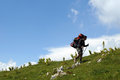 Hiking hiker with big backpack climbing mountain Royalty Free Stock Image