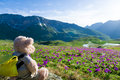 Hiking in mountains teddy bear Royalty Free Stock Photo