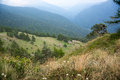 Hiking in natural park in italy piemonte reserve ecotourism summer vacation Royalty Free Stock Photos