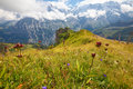 Hiking path along ridge and through alpine meadows Royalty Free Stock Image