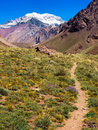 Hiking path in the Andes in Argentina, South Ameri Royalty Free Stock Photography