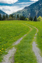 Hiking path in the bavarian alps germany Stock Photo