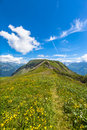 On the hiking path on Bernese Oberland Royalty Free Stock Photo