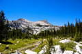 Hiking Path in Yosemite National Park Royalty Free Stock Images