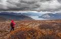 Hiking rainy autumn fall boreal alpine tundra path Royalty Free Stock Photo