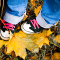 Hiking shoes over yellow leaves Royalty Free Stock Photo