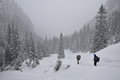 Hiking in snowstorm winter scene on the mountain with tourists thick snow bucegi mountains malaesti valley Royalty Free Stock Photography