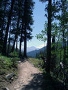 Hiking Trail Royalty Free Stock Photography
