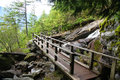 Hiking trail in british columbia canada Royalty Free Stock Photography