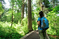 Hiking  at trail  in froest Royalty Free Stock Photo