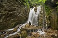 Hiking trail in a lush gorge in Slovenský Raj, Slovakia