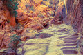 Hiking trail in petra steps carved stone on a through jordan Royalty Free Stock Image