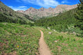 Hiking trail in the rockies san juan mountains colorado usa Royalty Free Stock Images