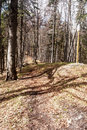 Hiking Trail In Spring Mountain Forest With Guidepost In Slovakia
