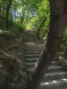 Hiking trail with stairs through a forest in Krka National Park in Croatia Royalty Free Stock Photo