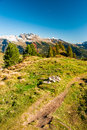 Hiking trail in swiss alps Stock Photography