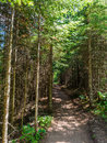 Hiking Trail at Tettegouche State Park in Minnesota 3 Royalty Free Stock Photo