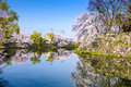 Hikone castle moat japan at the during spring season Stock Image