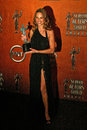 Hilary swank at the th annual screen actors guild awards pressroom shrine auditorium los angeles ca Royalty Free Stock Photography