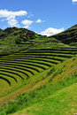Hilldide terraces in Peru Royalty Free Stock Photos