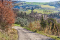 Hills of emilia romagna italy italian landscape with narrow mountain street and church on background Royalty Free Stock Photos