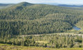 Hills and endless forests in northern finland lapland Royalty Free Stock Image