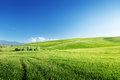 Hills in sunny day tuscany italy Stock Photos
