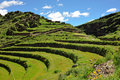 Hillside terraces in Urubamba Valley, Peru Royalty Free Stock Photography