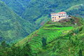 Hilltop village muong hoa valley terraced fields sa pa town vietnam Royalty Free Stock Photos