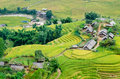 Hilltop village muong hoa valley terraced fields sa pa town vietnam Stock Images