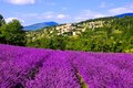 Hilltop village in Provence, France with beautiful lavender Royalty Free Stock Photo