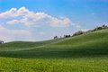 Hilly landscape green grass cloudy blue sky Stock Images