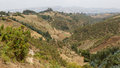 The hilly landscapes of ethiopia near wonchi creator lake area Stock Image