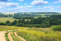 Hilly summer landscape with country road Stock Photography