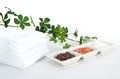 Himalayan rock salt three kinds on dish towels and plant background Stock Photos