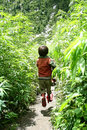 Himalayan utopia a local boy jumps in the narrow trail that runs along the fields of marijuana kutla in the slopes of the Royalty Free Stock Photos