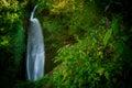 Himalayan waterfall Royalty Free Stock Photo